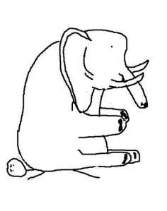 elephant sits